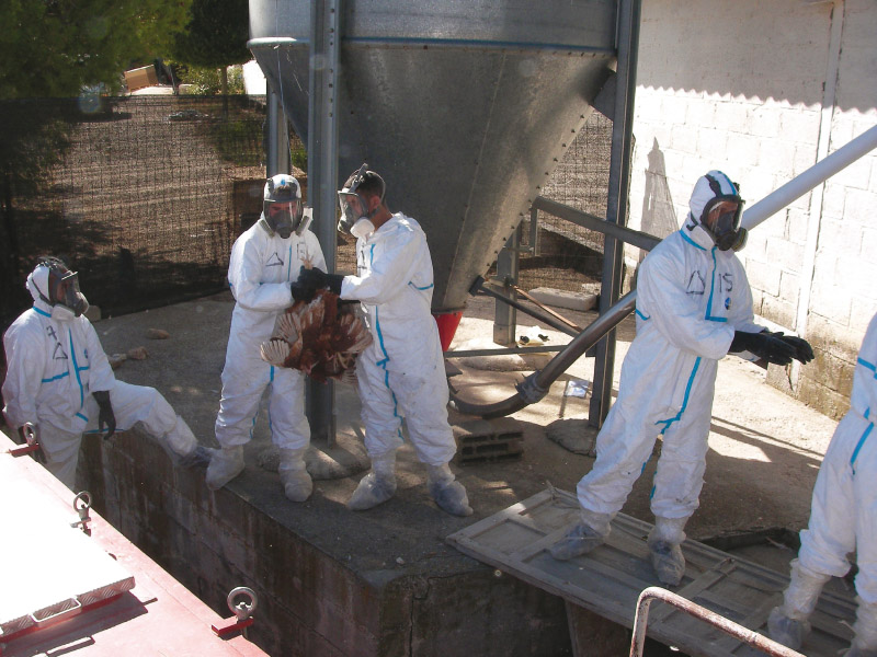 "Control of the outbreak of avian flu declared at the ""Granjas Segura, S. A."" farm"