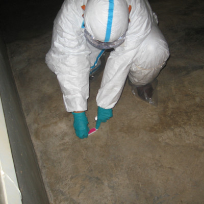 Emergency slaughtering, cleaning and disinfection at a poultry farm