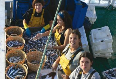 Mujeres realizando clasificación de pescado por tamaño en buque pesquero
